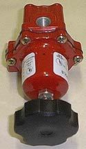 Regulator For Gas Forge